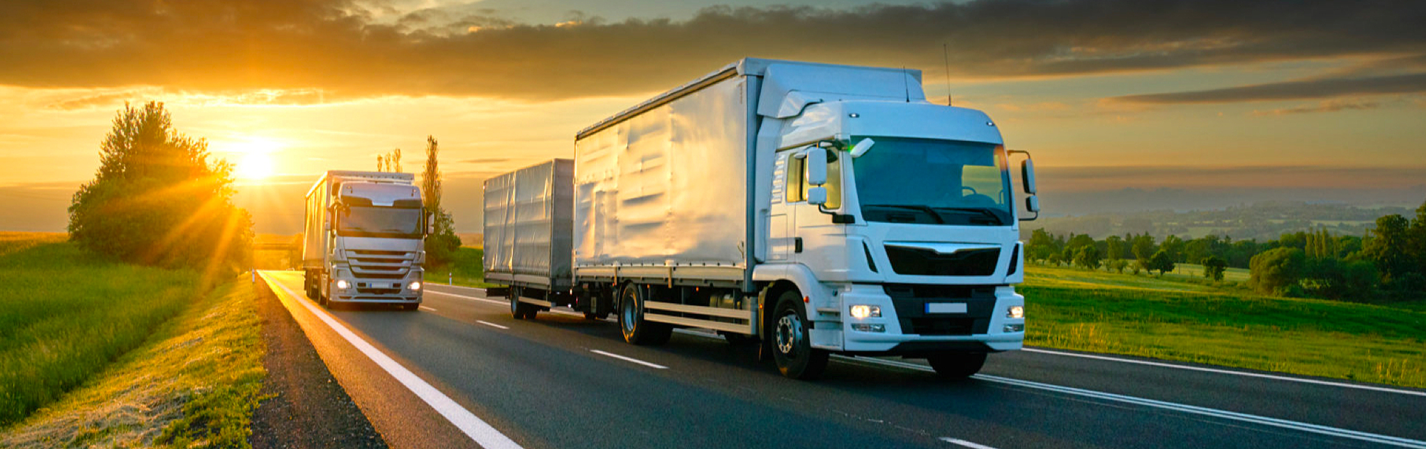 Services | Long Distance Removals